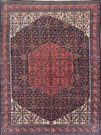 Geometric 9x12 Hamedan Persian Area Rug
