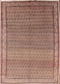 8x11 Mood Persian Area Rug