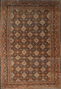 Antique 10x15 Kerman Persian Area Rug