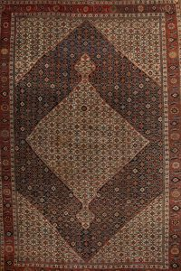 14x21 Bidjar Persian Area Rug