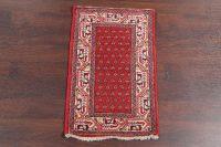 2x3 Botemir Persian Rug