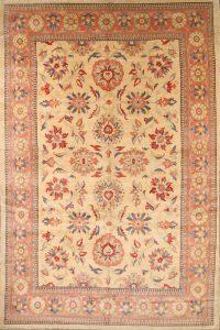 11x17 Meshkabad Persian Area Rug