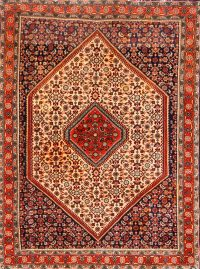 4x5 Bidjar Persian Area Rug