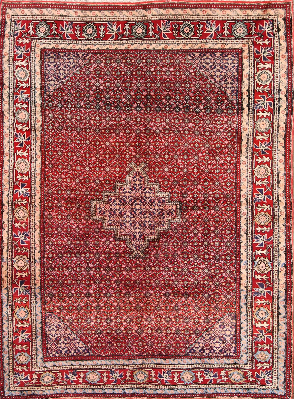 6x9 Zanjan Persian Area Rug