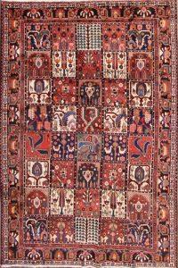 7x11 Bakhtiari Persian Area Rug