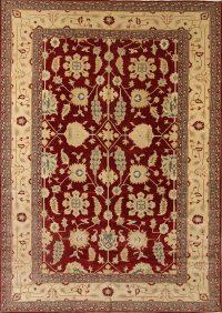 Stark Brand 10x14 Agra Peshawar Oriental Area Rug