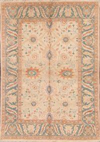 6x8 Oushak Egyptian Stark Brand Oriental Area Rug