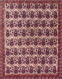 5x6 Afshar Kerman Persian Area Rug