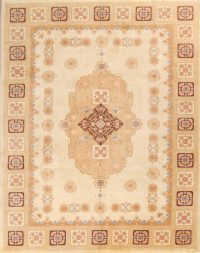 9x12 Aubusson Chinese Oriental Area Rug