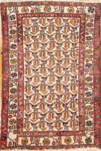 2x4 Malayer Hamedan Persian Area Rug