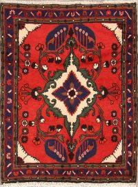 3x4 Hamedan Persian Area Rug