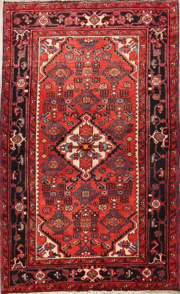 Hamedan Persian Area Rug 4x6