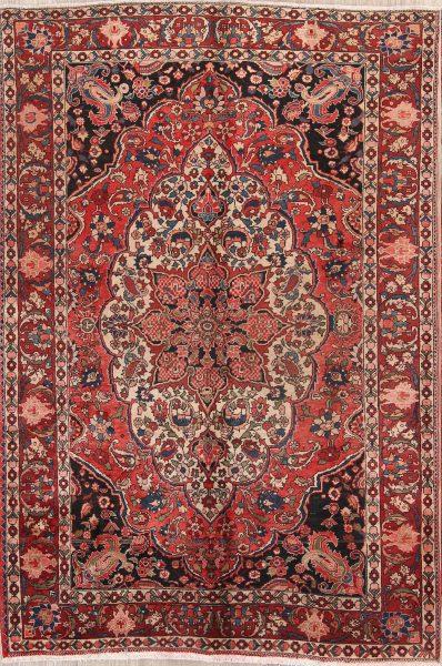 Decorative 7x10 Bakhtiari Persian Area Rug