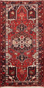 4x7 Hamedan Persian Area Rug