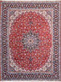 Soft Plush 9x12 Najafabad Machine Made Persian Area Rug