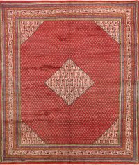 7x10 Botemir Persian Area Rug