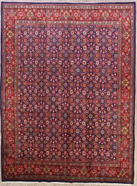 All-Over Floral 10x13 Sarouk Persian Area Rug