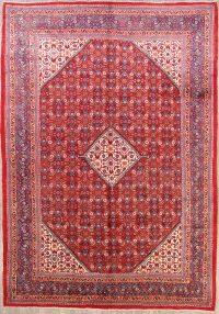 Geometric 10x14 Sarouk Persian Area Rug