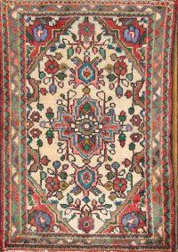 Floral Ivory 2x3 Hamedan Persian Area Rug