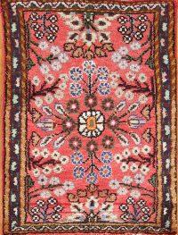 Floral 2x3 Lilian Hamedan Persian Area Rug