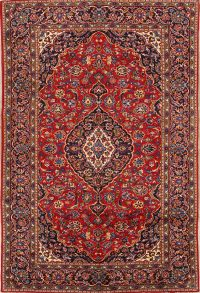 Traditional Floral 7x10 Kashan Persian Area Rug
