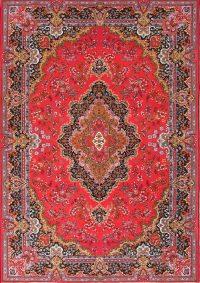 Soft Plush Floral 7x10 Kerman Persian Area Rug