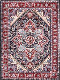 Soft Plush Geometric 6x10 Heriz Persian Area Rug