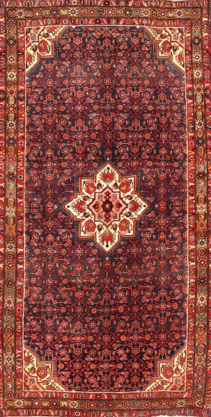 Geometric 6x11 Hamedan Malayer Persian Area Rug