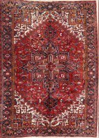 Geometric 8x11 Heriz Persian Area Rug