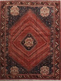 Geometric 5x7 Abadeh Shiraz Persian Area Rug