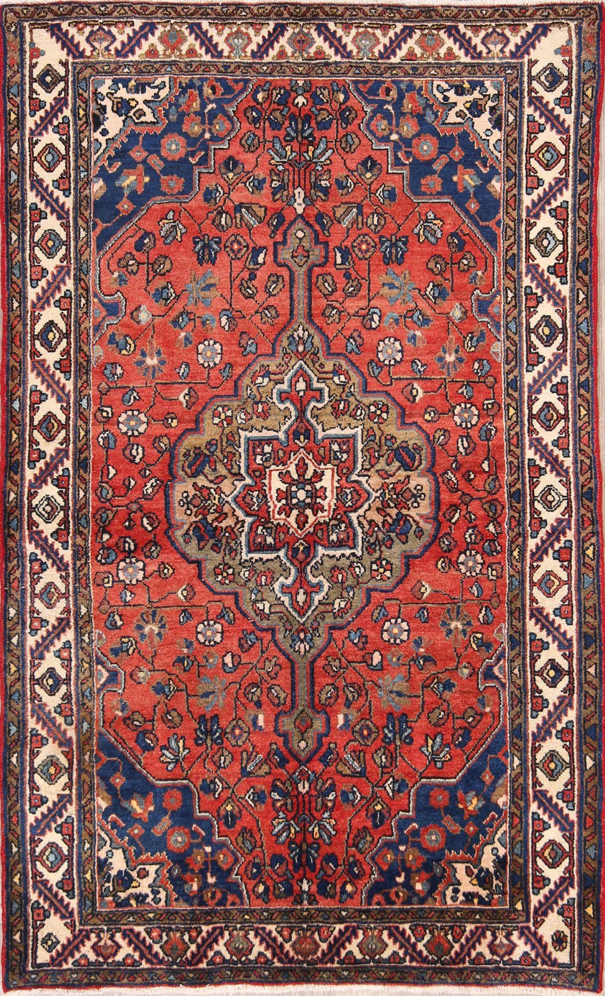 Geometric 4x7 Hamedan Malayer Persian Area Rug