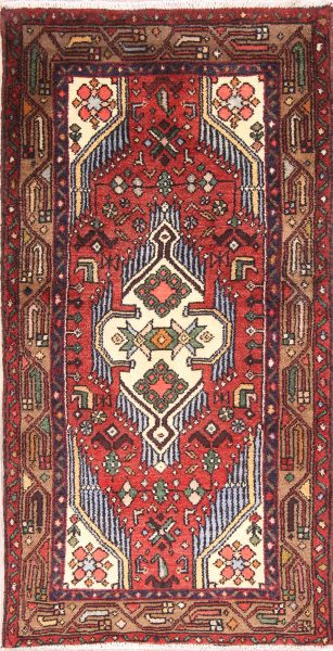 Geometric 3x5 Zanjan Persian Area Rug