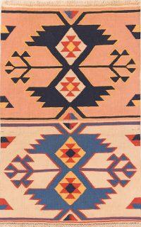 Geometric Tribal 3x5 Navajo Kilim Shiraz Persian Area Rug