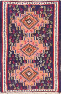 Geometric Tribal Animals 3x5 Bidjar Kilim Persian Area Rug
