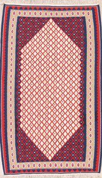 Geometric Ivory Tribal Nomad 4x6 Kilim Sanandaj Persian Area Rug