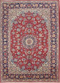 9x12 Najafabad Persian Area Rug
