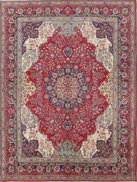 Animal Pictorial Geometric 10x13 Tabriz Persian Area Rug