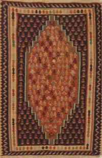 Geometric 4x5 Senneh Geometric Persian Area Rug