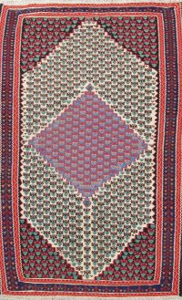 Geometric 4x6 Senneh Persian Area Rug