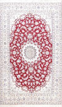 Floral Red 6x10 Nain Isfahan Persian Area Rug