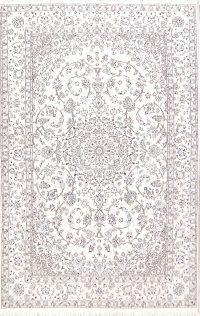 6x10 Nain Persian Area Rug