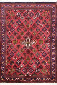 All-Over Pinkish Red 4x5 Joshaghan Persian Area Rug