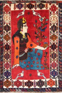 Pictorial Minatory 4x6 Shiraz Persian Area Rug