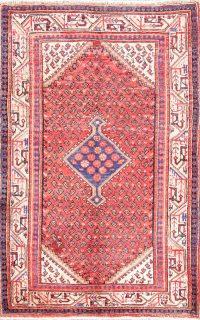 Geometric 3x5 Geometric Botemir Persian Area Rug