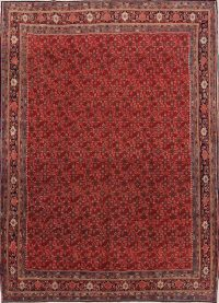 All-Over Floral 9x12 Bidjar Persian Area Rug