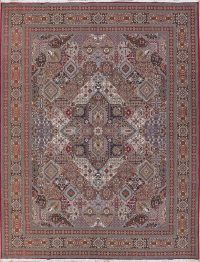 Soft Plush Geometric 10x13 Bakhtiari Persian Area Rug