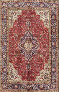 Floral 7x10 Tabriz Persian Area Rug