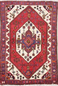 Geometric Pictorial 4x5 Hamedan Persian Area Rug