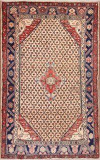 Koliaei Persian Area Rug 4x7