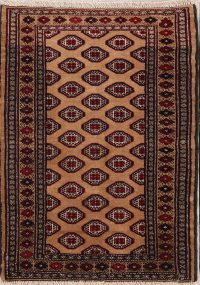 Turkoman Persian Area Rug 3x4